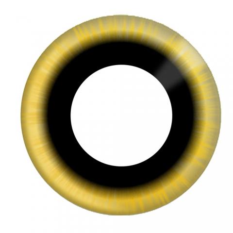 Eyecasions - Eclipse 2 čočky - crazy čočky