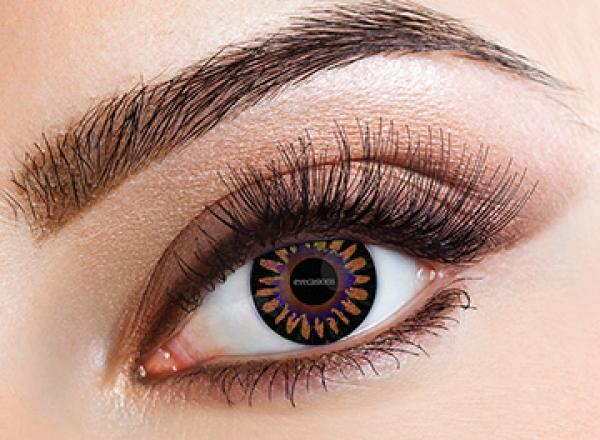 Eyecasions - Misty Brown | mesačné + 60ml roztok + púzdro zadarmo