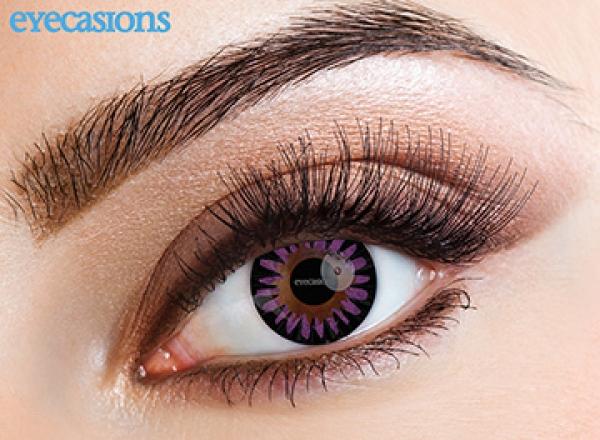 Eyecasions - Misty Violet   mesačné + 60ml roztok + púzdro zadarmo