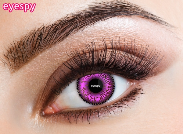 Eyespy - Violet | jednodňové