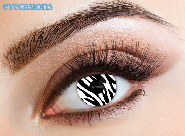 Eyecasions - Zebra 2 čočky - crazy čočky
