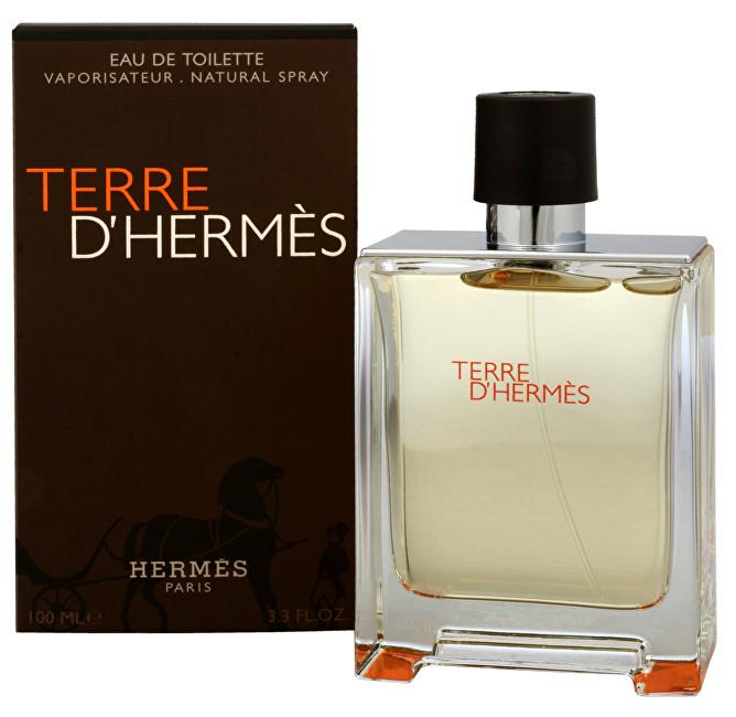 HERMES Terre D´ Hermes - EDT 100 ml
