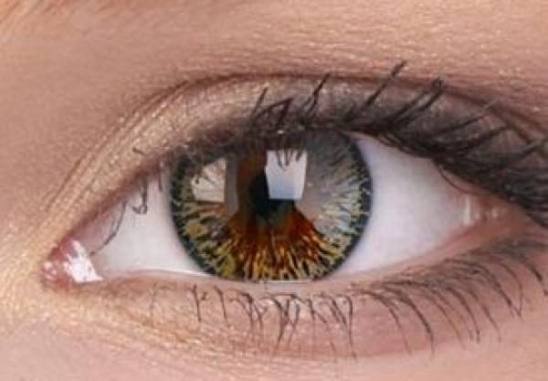 ColourVUE - Elegance Brown - dioptrické | čtvrtletní