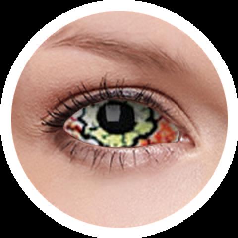 ColourVUE - Kurse - sclera   féléves