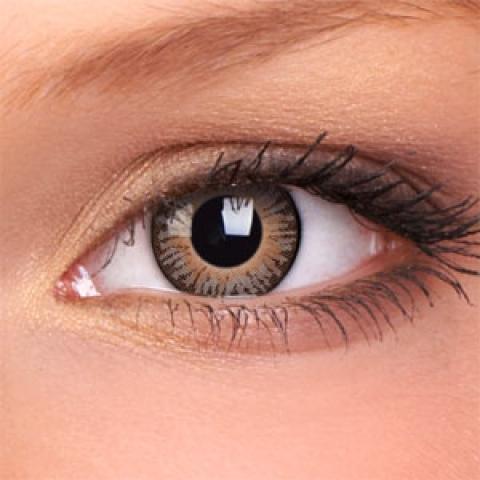 ColourVUE - 3-Tones - brown | negyedéves